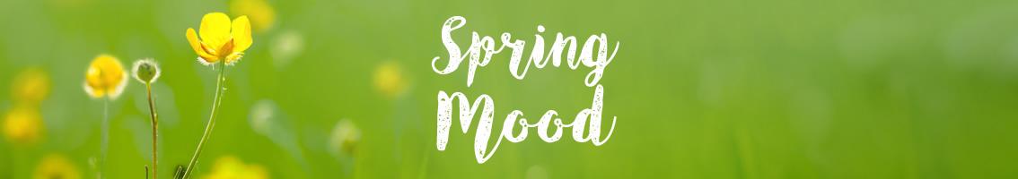 Spring Mood -10% sul catalogo giardino con codice promo: SM2017
