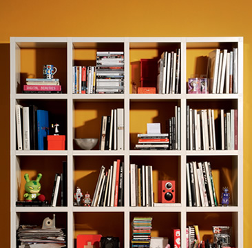 LIBRARY AND SHELVES