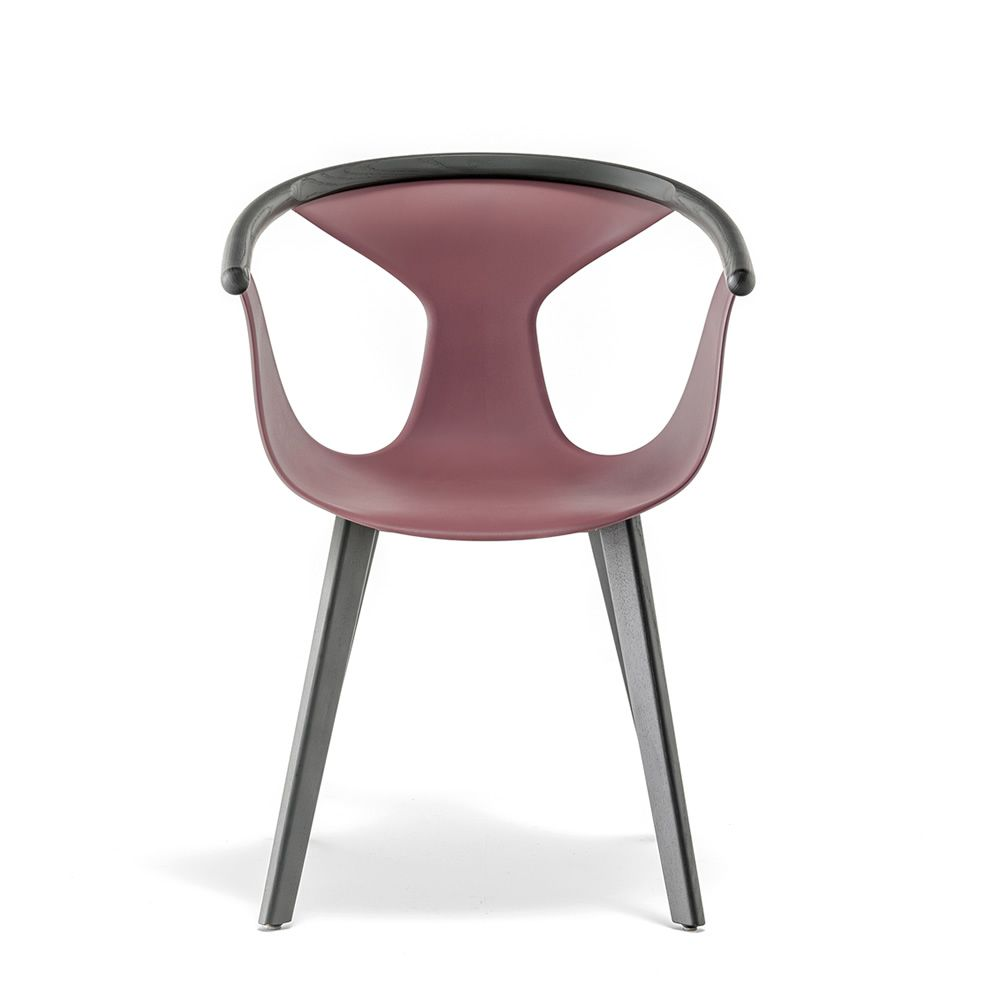 Fox 3725 pedrali chair in ash wood and polypropylene for Table 6 in as 3725