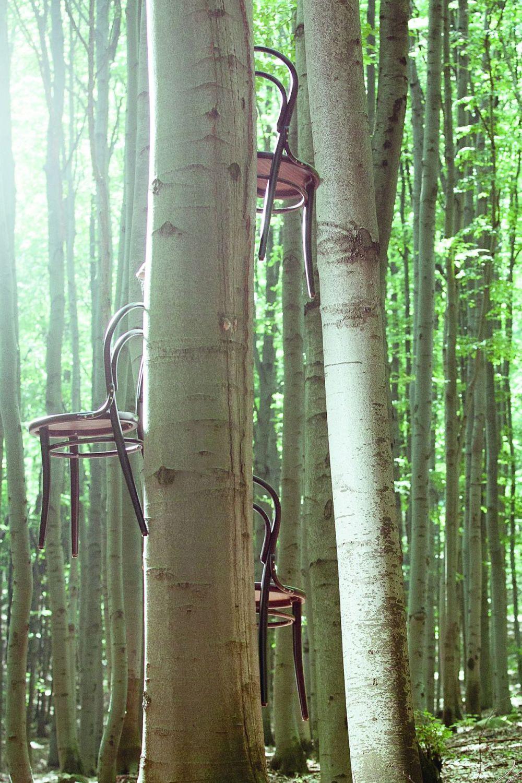 Chair 14 c sedia ton in legno curvato sedile in paglia for Sedia design paglia di vienna