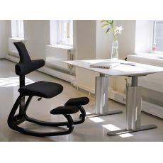 Thatsit™ Balans® - Thatsit™Balans® ergonomic chair with backrest