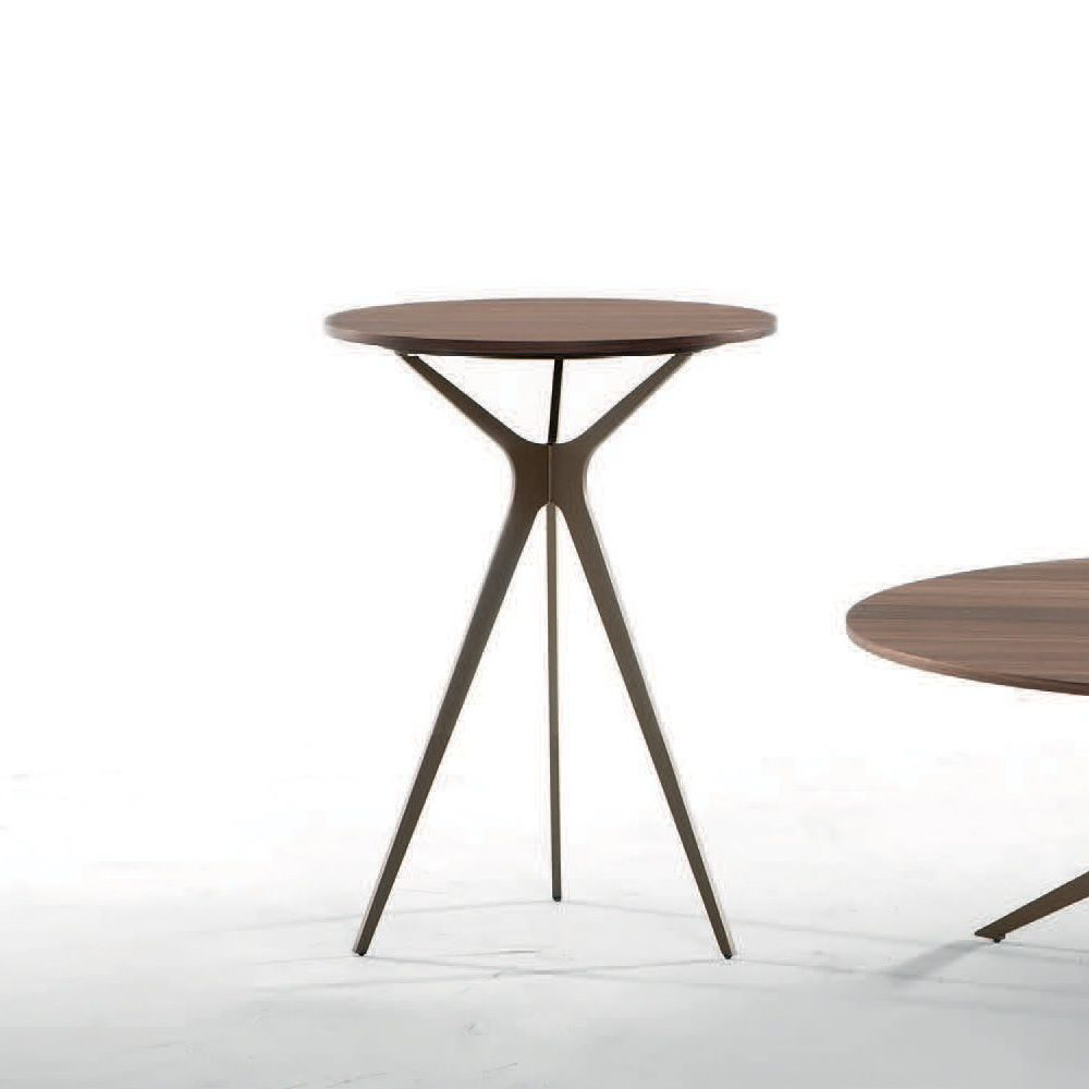 Tonin Casa Tree Coffee Table: Tonin Casa Coffee Table With Metal Frame And