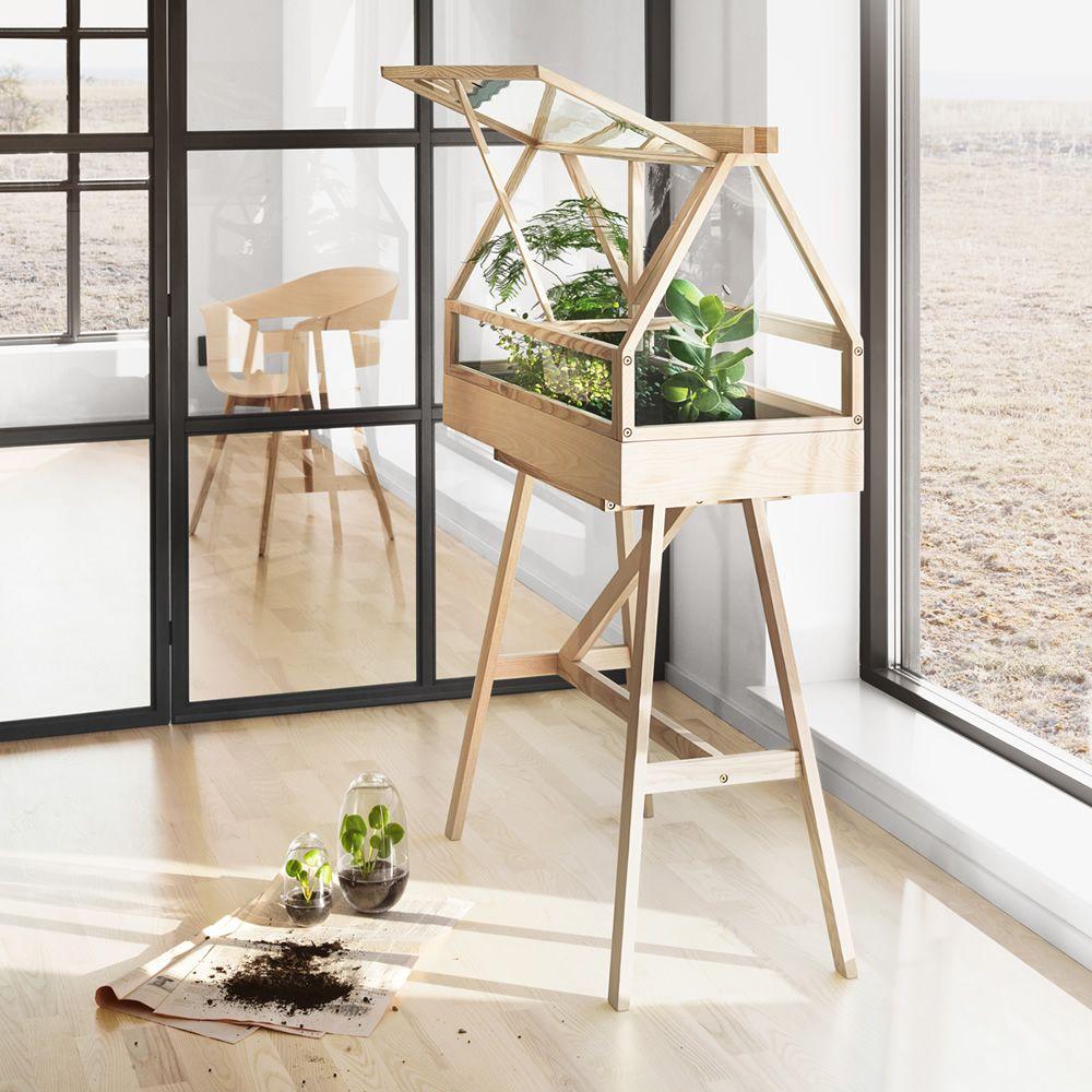 Greenhouse: Mini-serre d\'intérieur en bois de frêne - Sediarreda