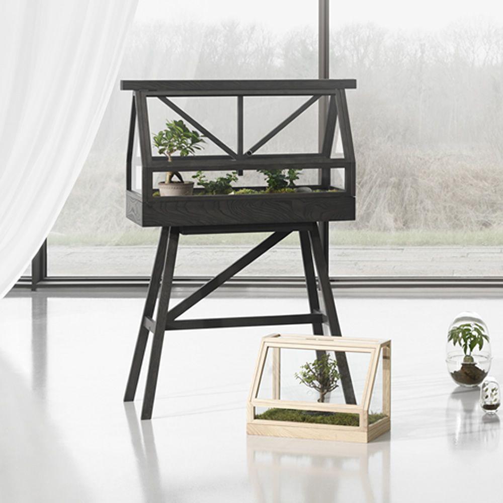 Greenhouse - Mini-serre d\'intérieur en bois de frêne - Sediarreda
