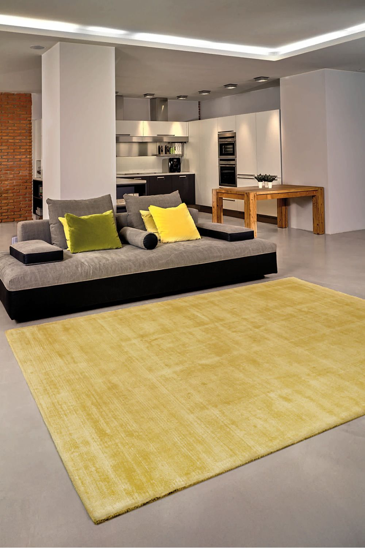 trendy shiny tapis moderne en soie v g tale en diff rentes couleurs et dimensions sediarreda. Black Bedroom Furniture Sets. Home Design Ideas