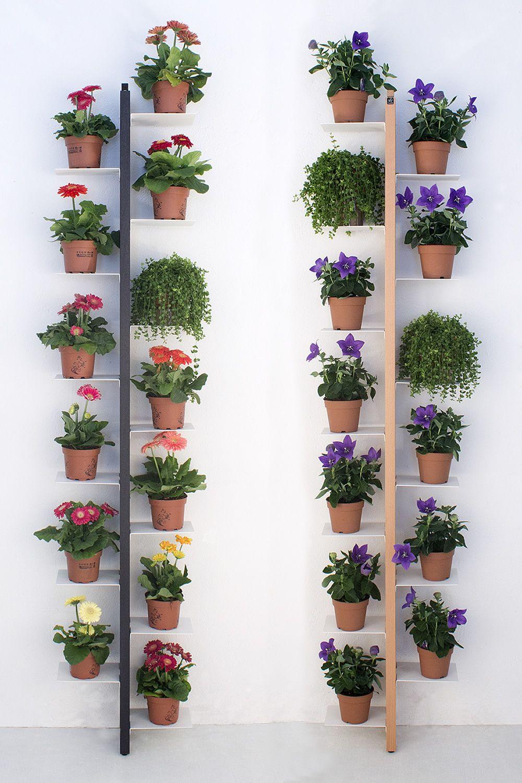 Zia flora p macetero vertical fijado a la pared en madera maciza disponible en varios - Maceteros de madera baratos ...