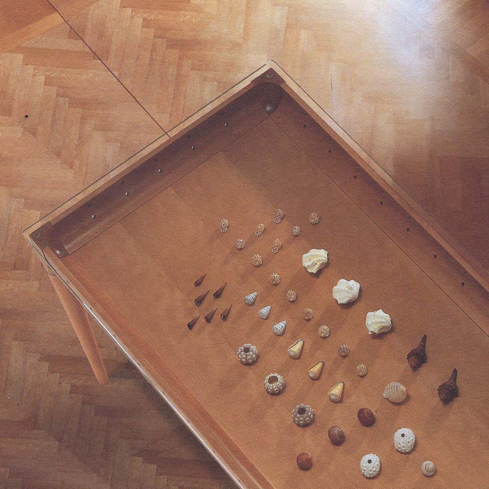 Table 229 holztisch tonon mit glasplatte und doppeltem for Holztisch mit glasplatte