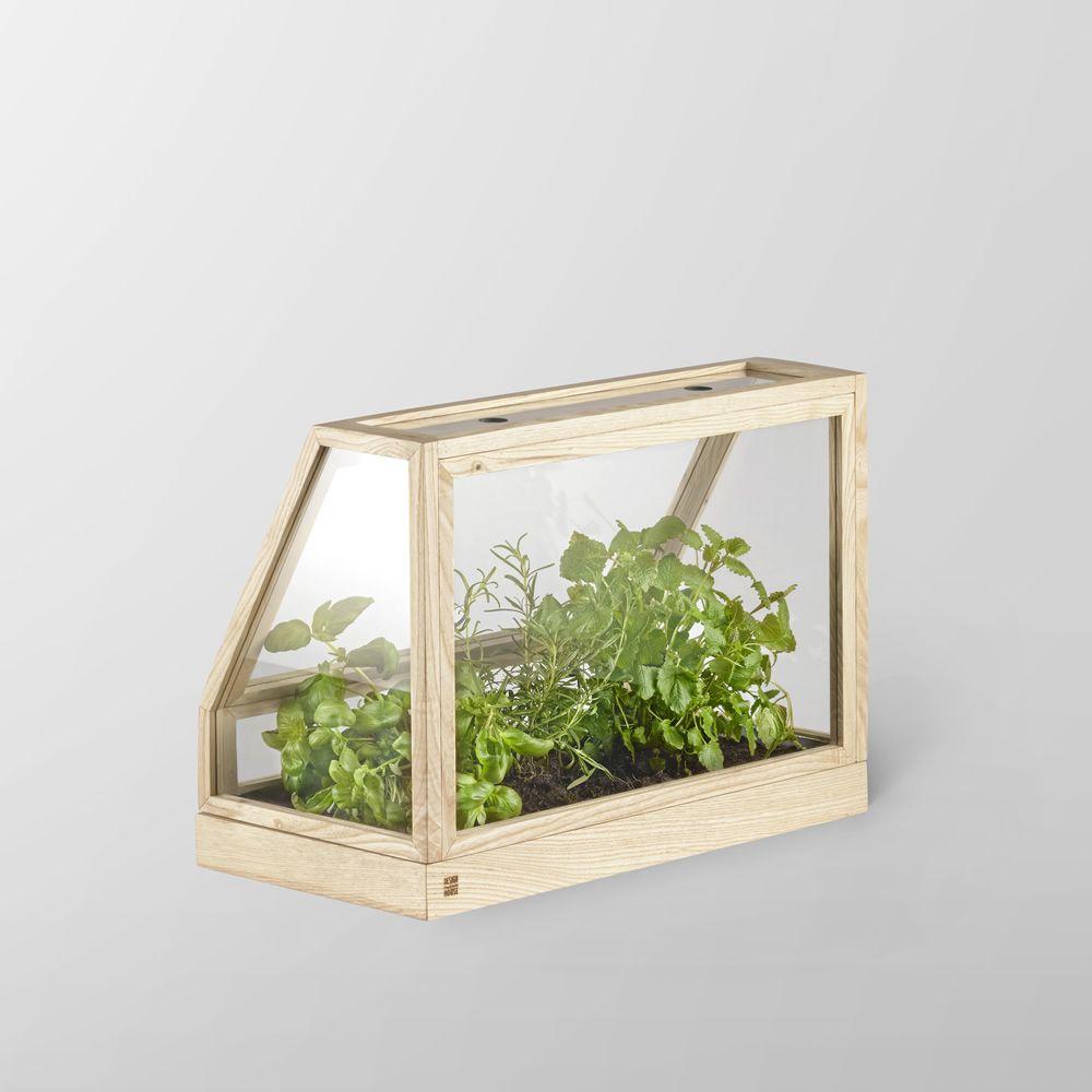 greenhouse mini mini serre d 39 int rieur en bois de fr ne sediarreda. Black Bedroom Furniture Sets. Home Design Ideas