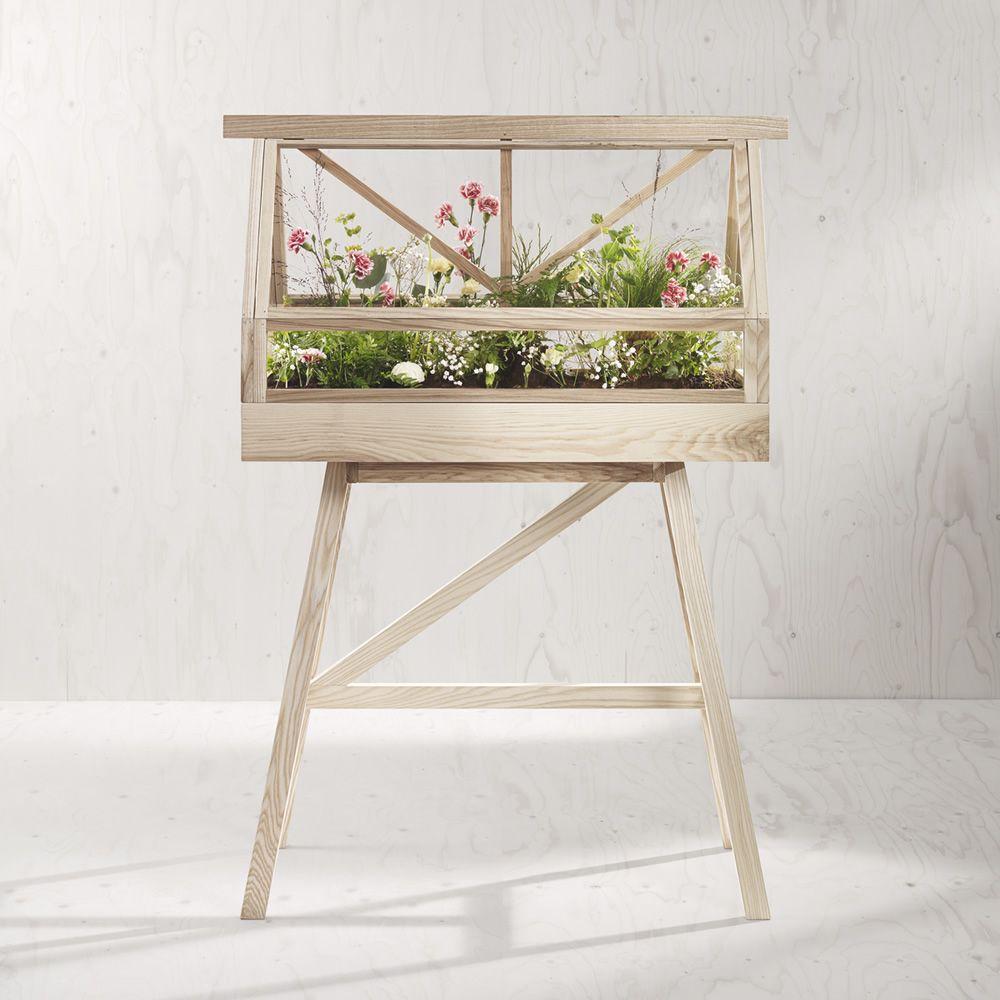 Greenhouse: Mini-serre d\'intérieur en bois de frêne, teinté naturel ...